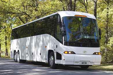New Orleans Charter Bus