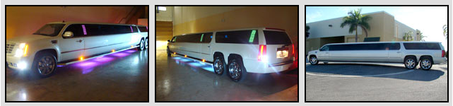 new orleans limo